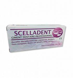 Ciment Dentaire SCELLADENT - Recoller vos bridges, couronnes, pivot... avec de la marque TOUT DENTAIRE image 0 produit