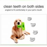 dentifrice naturel chien TOP 4 image 2 produit