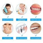 Irrigateur oral de flosser de l'eau, nettoyeur sans fil électrique portatif rechargeable de dents de jet d'eau d'USB approuvé par FDA pour l'usage de voyage et de maison de la marque Semme image 2 produit