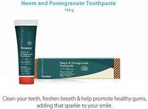 Neem & Pomegranate Toothpaste | Dentifrice sans fluorure | Végétarien | 150g (1-Pack) de la marque ORGANIQUE BY HIMALAYA image 0 produit