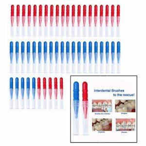 OFKPO 50 pcs Brossettes Interdentaires, Dents Nettoyant la Brosse à Dents et Soins Oraux Brosse ( Rouge + Bleu ) de la marque OFKPO image 0 produit