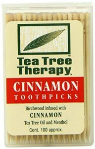 TEA TREE - Toothpicks (Cinnamon) - 100 Count de la marque Tea Tree Therapy image 0 produit