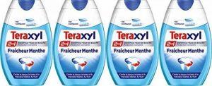 Teraxyl - Dentifrice - Fraicheur Menthe - Flacon 75 ml - Lot de 4 de la marque Teraxyl image 0 produit